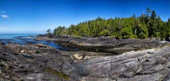 Botanisch strand stock fotografie