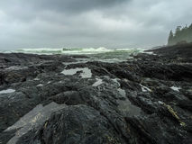 Botanisch Strand, Juan de Fuca Trail, Haven Renfrew, BC, Vancouver stock foto's
