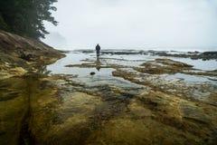 Botanisch Strand, Juan de Fuca Trail, Haven Renfrew, BC, Vancouver royalty-vrije stock foto