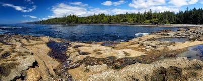 Botanisch Strand op het Eiland van Vancouver royalty-vrije stock afbeelding