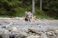 Botanisch Strand Provinciaal Park, Haven het Eiland van Renfrew, Vancouver, stock afbeelding