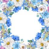 Botanische Fahne des Aquarells Lizenzfreie Stockbilder