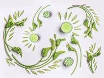Botanische flache Lage mit Blättern, grünen Blumen und Kerzen auf weißem Hintergrund, Draufsicht Badekurort, Wellness, Schönheit stockbild