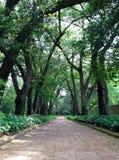 Botanische Gärten Stockbilder