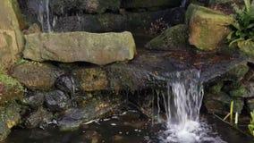 botanische Gärten des Stromes stock video footage