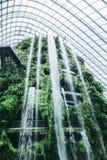 Botanische Gärten Singapurs stockfoto
