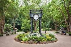 Botanische Gärten Singapurs Stockfotografie