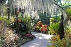 Botanische Gärten Singapurs Stockbilder