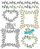 Botanische Grenzen en Kaders Stock Afbeelding