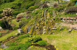 Botanische het zuidenkust van tuinenventnor het Eiland Wight van de stad van de eilandtoerist Royalty-vrije Stock Foto