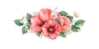 Botanische Illustration des Watercolour Blumenzusammensetzung mit wilden Blumen und Blättern stock abbildung