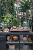 Botanische lijst in tuinplaats Stock Afbeeldingen