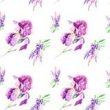 Botanische lupines van de waterverfillustratie en irisbloemen die op witte achtergrond wordt geïsoleerd Naadloos patroon stock illustratie