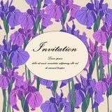 Botanische mit Blumenblume der Vektor-Iris Heiratsdekorative mit Blumengrenze der hintergrundkarte lizenzfreie abbildung