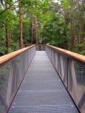 Botanische Spur, Park in AnykÅ-¡ Ä  iai, Litauen Lizenzfreie Stockfotografie