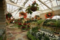 Botanische Tuin stock foto's
