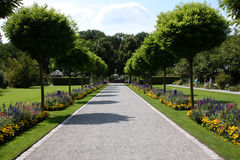 Botanische tuin Stock Fotografie