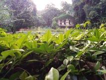 Botanische tuin, India royalty-vrije stock afbeeldingen