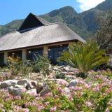 Botanische tuin in Kaapstad Stock Afbeeldingen