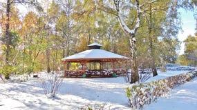 Botanische tuin in Lodz Royalty-vrije Stock Afbeelding