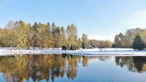 Botanische tuin in Lodz Royalty-vrije Stock Foto's