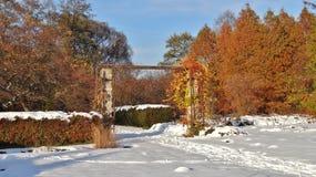 Botanische tuin in Lodz Royalty-vrije Stock Foto