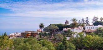 Botanische tuin met een boom Drago Millenario van de 1000 éénjarigendraak in Icod DE lod Vinos, Tenerife stock foto
