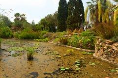 Botanische tuin op Mediterrane kust van Spanje, Blanes Stock Afbeeldingen