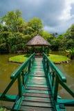 Botanische Tuin Pamplemousses, Mauritius stock fotografie