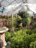 Botanische Tuin in Pittsburgh Stock Afbeeldingen