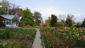Botanische Tuin vladivostok Rusland Stock Foto