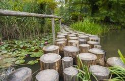 Botanische tuin Volcji potok Stock Afbeeldingen