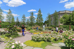 Botanische tuin in Washington DC, de V.S. royalty-vrije stock foto