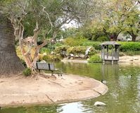 Botanische tuinbank en toneelvijver in Santa Barbara California stock foto