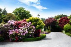 Botanische tuinen royalty-vrije stock afbeeldingen