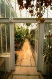 Botanische tuinen Belfast Stock Foto