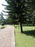 Botanische tuinen met groene weg royalty-vrije stock foto's