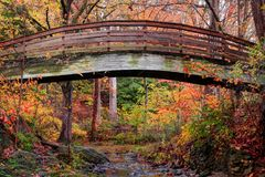 Botanische Tuinen Overspannen Brug Asheville tijdens Daling stock foto's