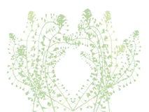 Botanische vectorachtergrond Royalty-vrije Stock Afbeelding