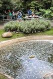 Botanischer Garten Lizenzfreie Stockbilder