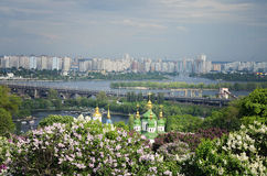 Botanischer Garten auf einem Hintergrund der Stadt lizenzfreies stockbild