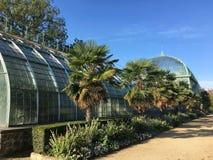 Botanischer Garten Auteuil ` Jardin DES Serres d im Bois de Boulogne Lizenzfreie Stockfotografie