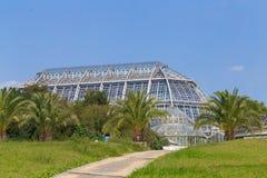 Botanischer Garten, Berlin. Greenhouse of glass with palms in the botanical garden. Botanischer Garten, Berlin stock photo