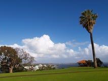 Botanischer Garten der König-Park Lizenzfreies Stockfoto