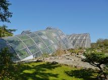 Botanischer garten lub ogród botaniczny Graz obraz royalty free