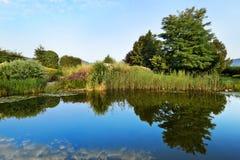 Botanischer Garten mit einem See Lizenzfreie Stockbilder