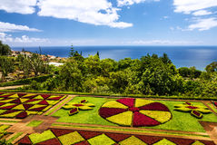 Botanischer Garten Monte in Funchal von Madeira, Portugal Stockbild