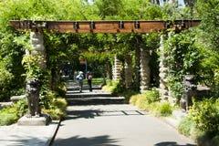 Botanischer Garten - Sydney - Australien lizenzfreies stockbild