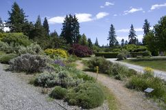 Botanischer Garten Vancouvers an der Universität des Britisch-Columbia Lizenzfreies Stockbild
