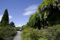 Botanischer Garten Vancouvers an der Universität des Britisch-Columbia Stockfotos